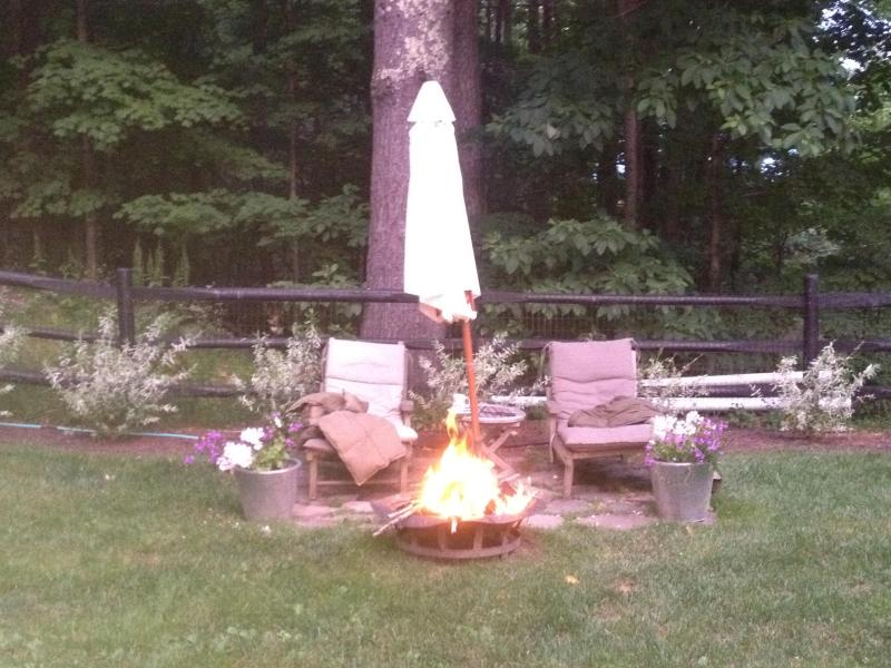 the 2nd fire pit area in fenced in garden