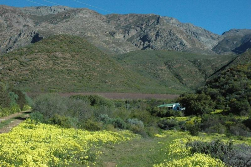 Dew Cottage in the Langeberg Mountains