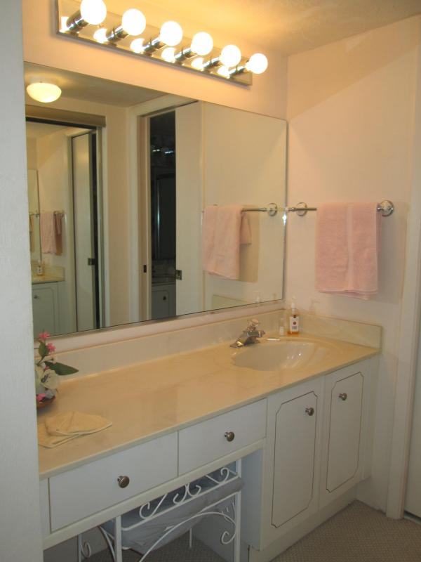 separate master bath vanity area