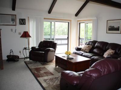 Living room, plenty of sunlight