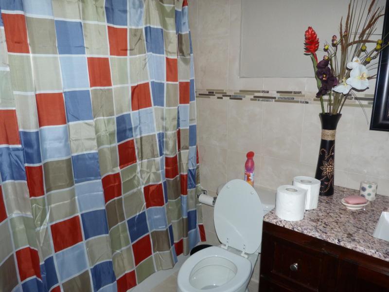 Ducha baño principal vista #2