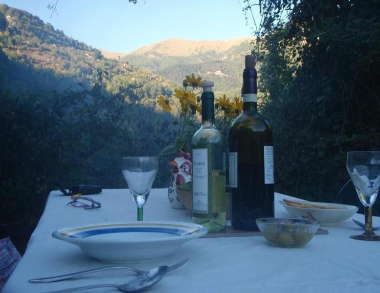 Traditional Stone Holiday Cottage  In Liguria, Ita, holiday rental in Tende