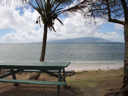 Pu'unana- Picnic Table