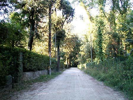 Private street around the villa