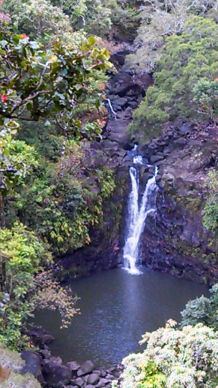 One of many Waterfalls you will see off the Road to Hana