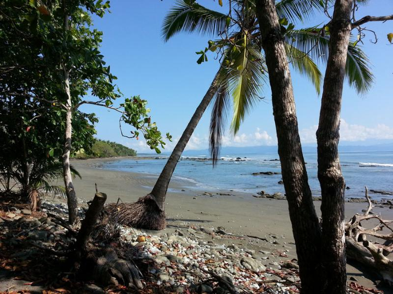 Tropical beach in front at low tide, warm and gentle waves,