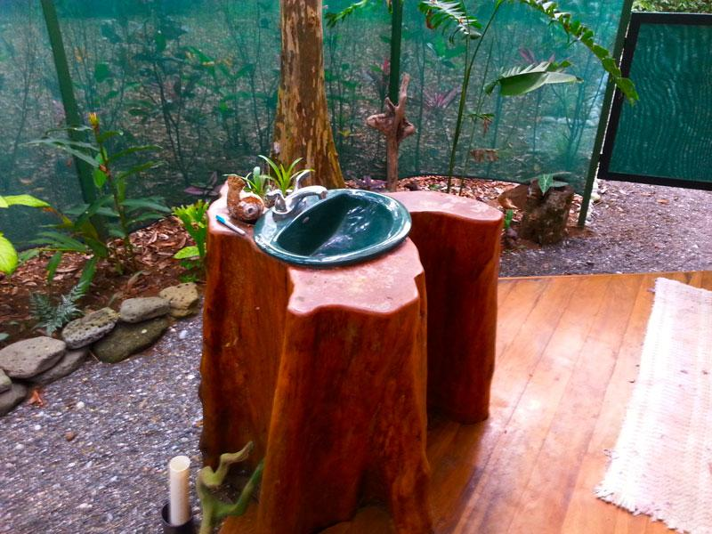 Wash basin set in tree trunk, jungle view