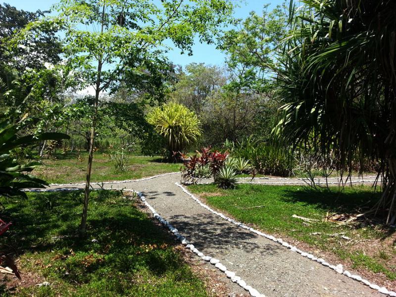 A pie de jardín tropical.