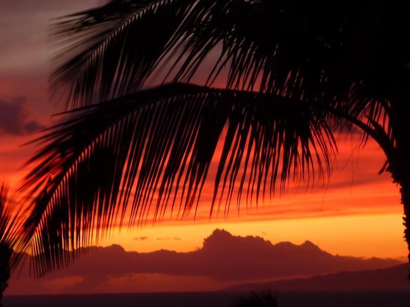 Kihei en moyenne moins de 11' de pluie par an.  Tous les soirs vous propose un superbe coucher de soleil !