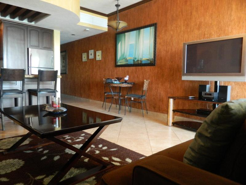 Stainless Steel Appliances with Flat Screen Television