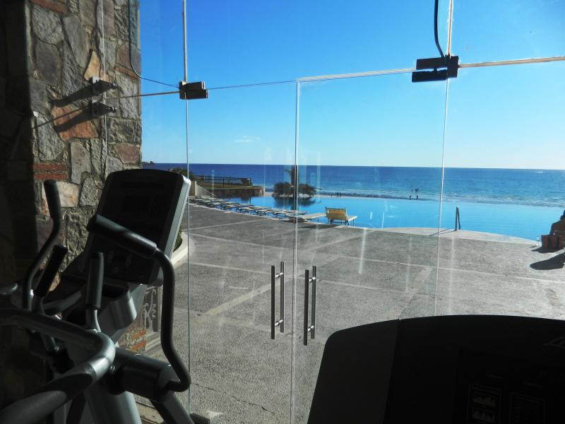 Health Club with Free Weights and Top of the Line Cardio Equipment