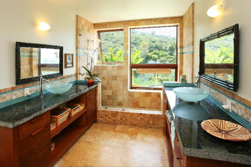 Master bathroom, glass sinks, blk granite counter tops, natural stone tub shower