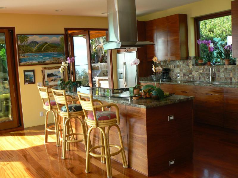 Kitchen w/ surfboard glass seating area