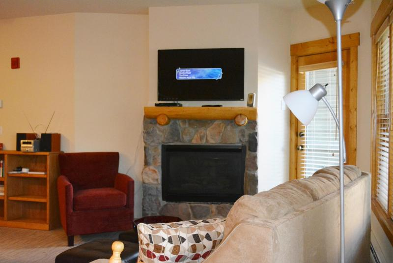 42' HDTV with 40+ HD channels & 20 digital music channels