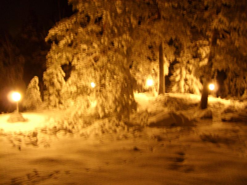 The lights in the winter evening