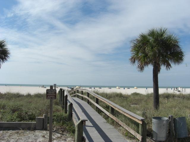 Beach Catwalk