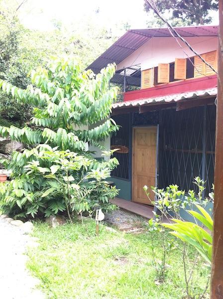 Mango Loft upstairs and River Casita downstairs
