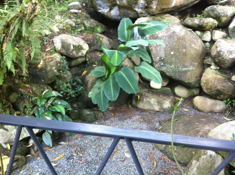 Een ander rotstuin - bovenste Patio weergave
