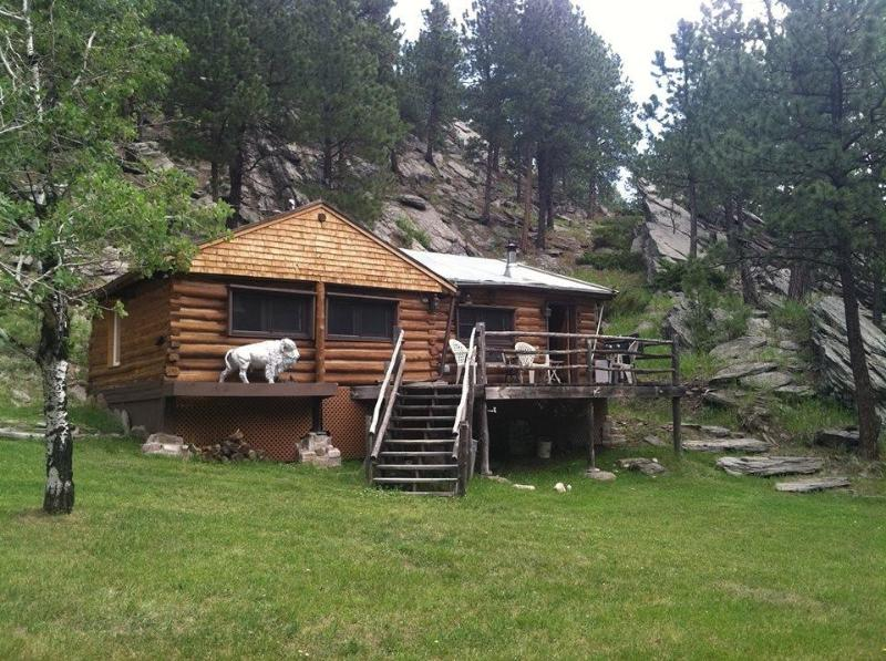 Lost Bison Cabin, holiday rental in Custer