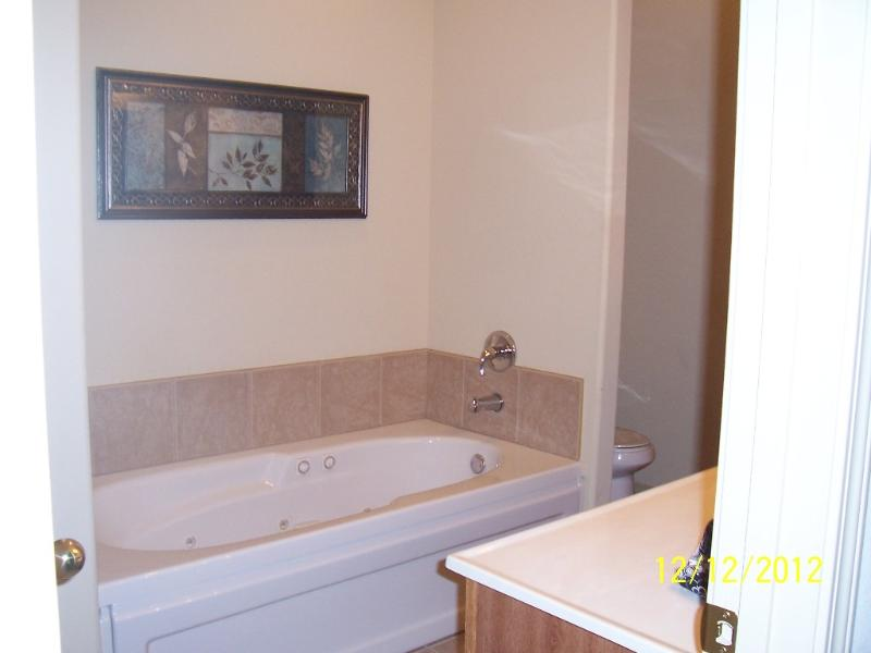 Master Bath w/ jetted tub, seperate shower and walk in closet