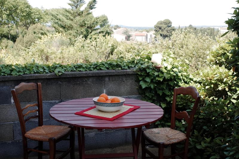 House in the heart of Corbieres wine country., vacation rental in Puicheric