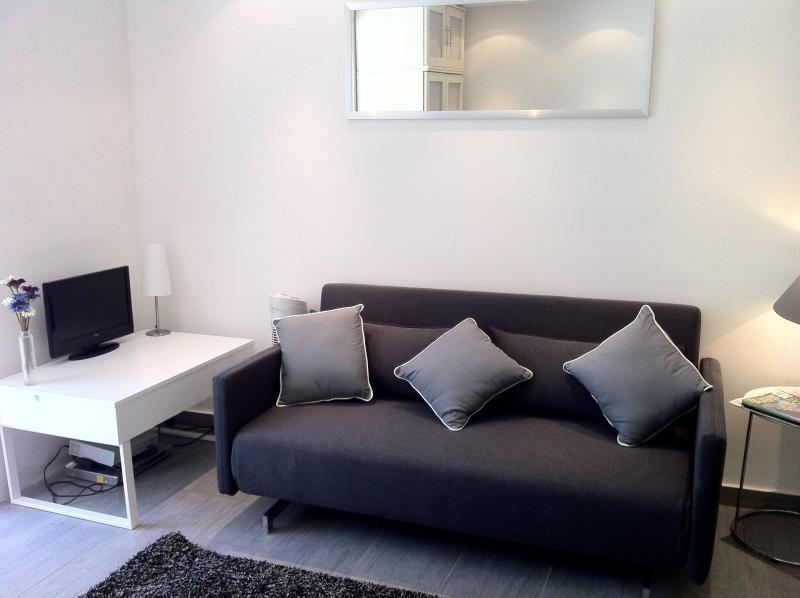 Newly renovated studio with sofa bed as well as full size double bed