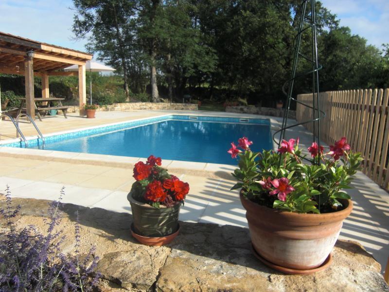 Beautiful new pool area