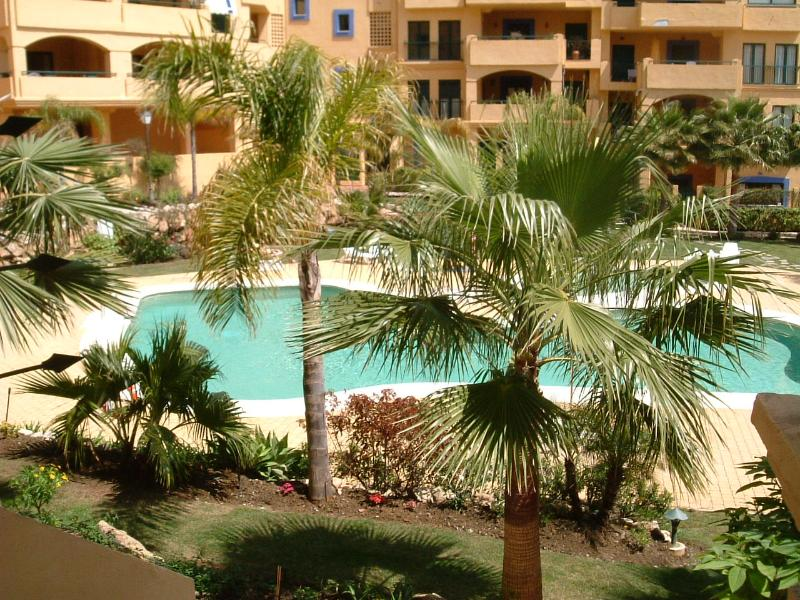 Swimming pool and garden area as seen from terrace