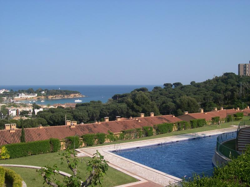 Pool and gardens with sea in background