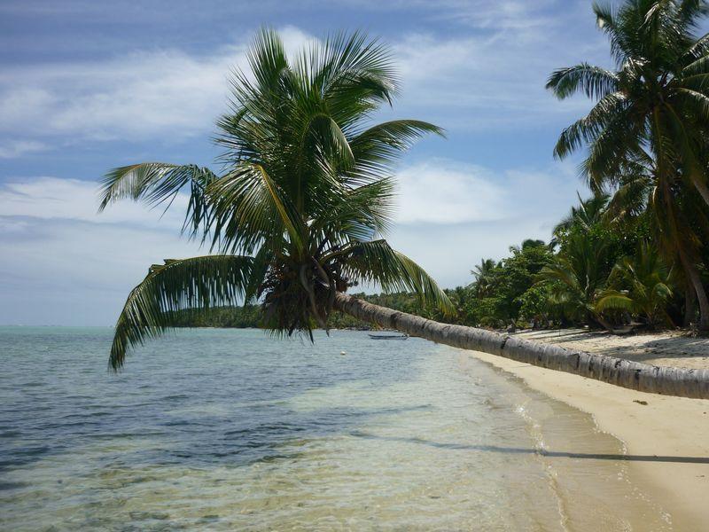 Maison bio sur la plage direct sur terrain de 7.100 m². Construction de 110 m², vacation rental in Toamasina Province