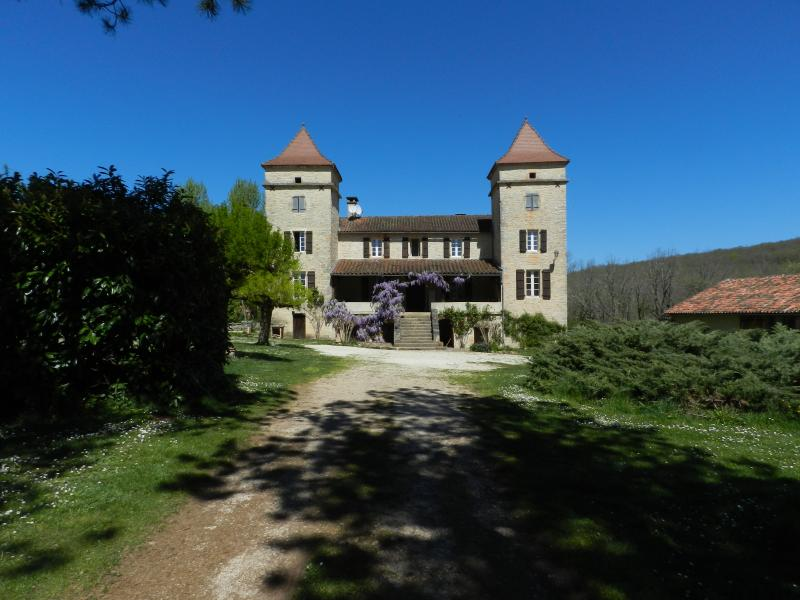 Two characterful properties with private pool near Cahors, alquiler vacacional en Nuzejouls