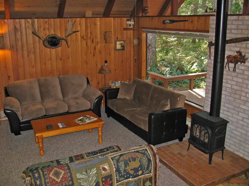 Vaulted Ceilings and Big Windows Looking into Forest