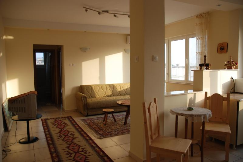 Elegant sunny 1-2 bedroom apts on the Black Sea, holiday rental in Costinesti