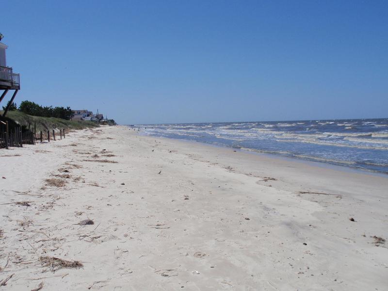 Llevar tu perro a la playa bahía cerca de nuestra casa y caminar por millas en cualquier dirección.