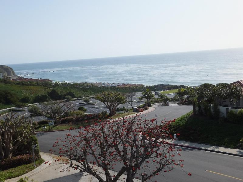 Oceanview from backyard. Community is private and gated with guard. Electronic fob needed for beach