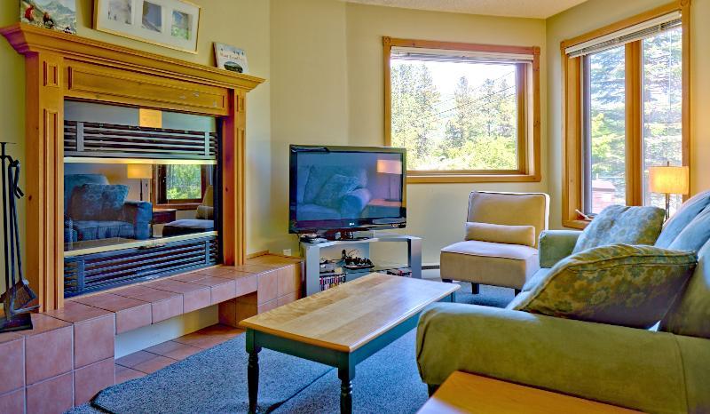 La sala de estar con 42' HDTV (Netflix / Hulu / colección de películas), chimenea y sofá cama.