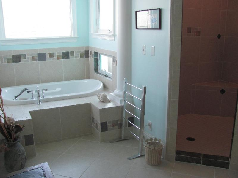 Master Bath Shower and Bain Ultra Tub