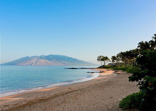 Ulua Beach: Short 10 Minute Walk From Palms at Wailea 1503