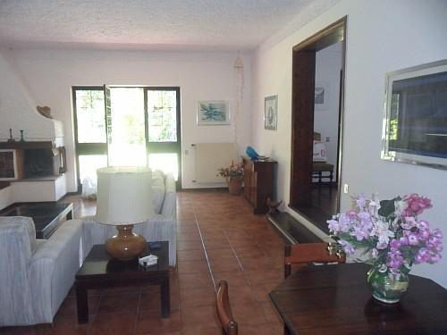 la villa di fiammetta, holiday rental in Colonia Elena