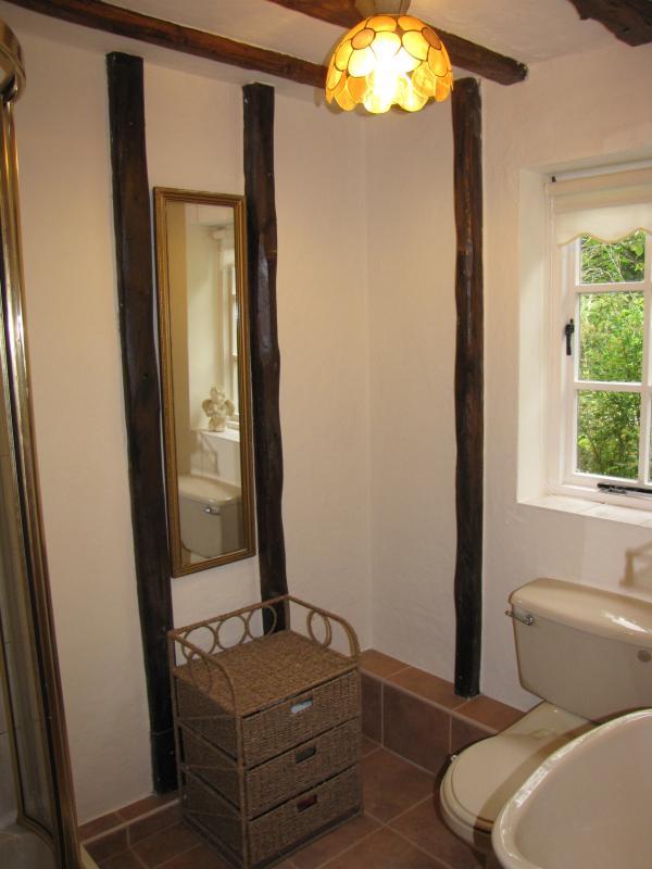 Casa de banho do piso térreo e banheiro ao lado da sala rosa