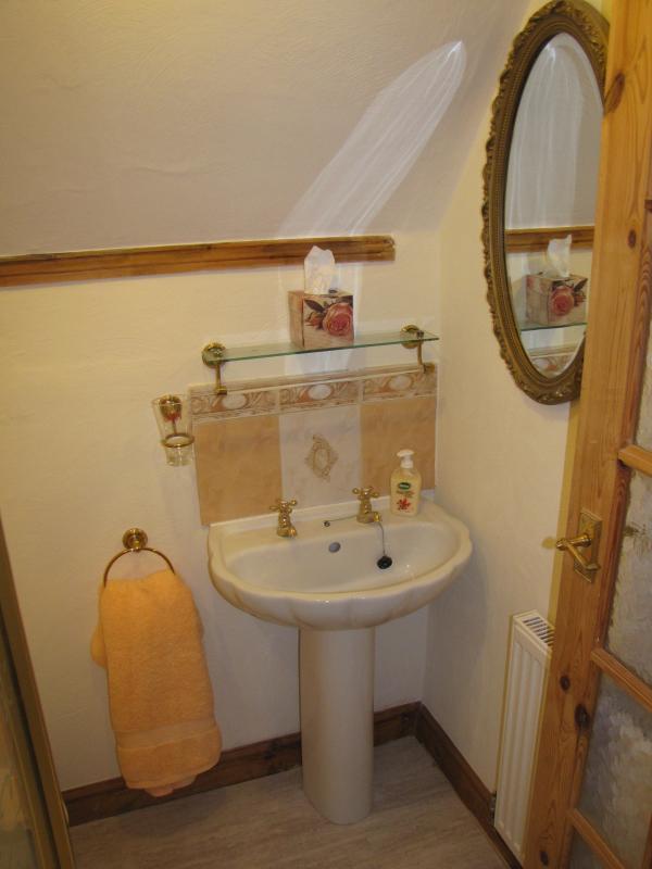 Lá em cima do chuveiro quarto pt terno para a sala de lavanda