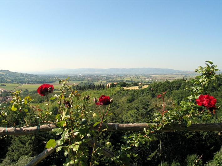 Castel Darno - Il Subasio app.to max 12 pers, location de vacances à Ripa