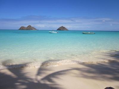 lanikai beach a short walk away