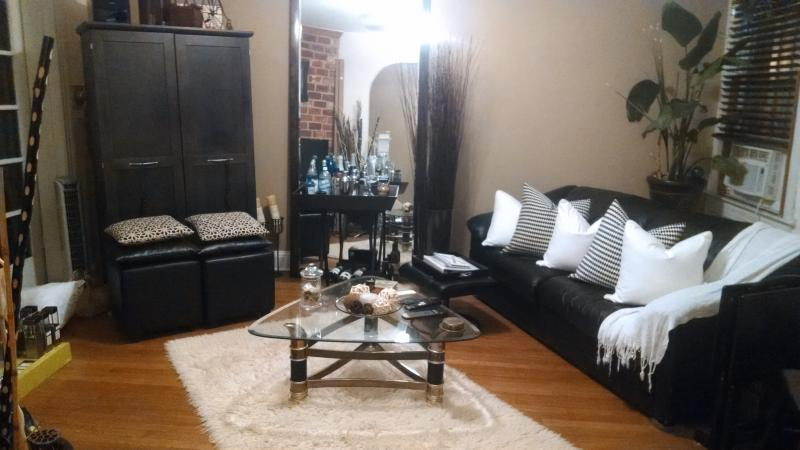 Dog friendly, BR to rent in house LeDroit Park WDC, vacation rental in Suitland