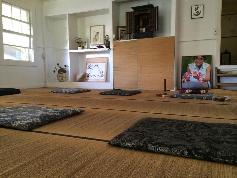 Meditation five times per week