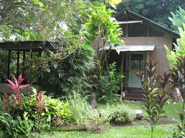Mango Tree Cottage, our solar cottage, surrounded by bamboo, guava, avocado and multi-colored plants