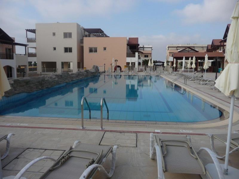 Swimming Pool with Bar in the top right corner