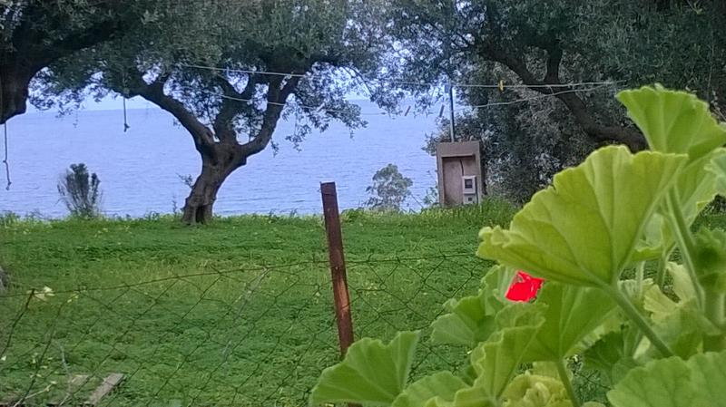 CHARMING AND IDYLLIC HOUSE WITH BBQ  IN KORONI, vacation rental in Koroni