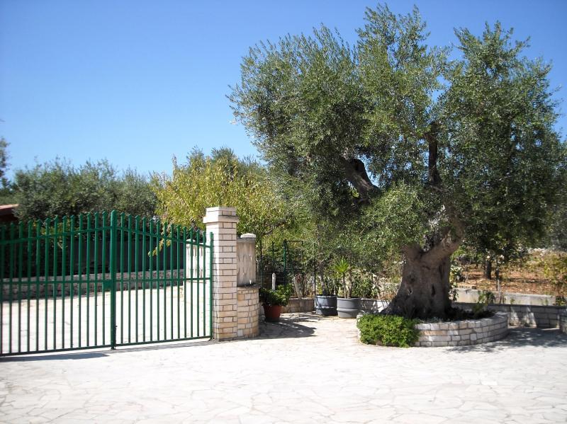 Stunning villa close to the sea, holiday rental in Scamardella