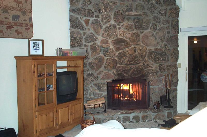 living room - real fireplace